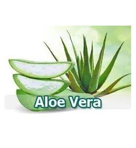 Aloe Vera 1 bleu 120 g