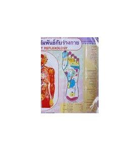 Poster réflexologie massage du pied Nr 2