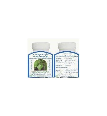 Tinospora crispa (régulateur appétit, diabète, hypertension)
