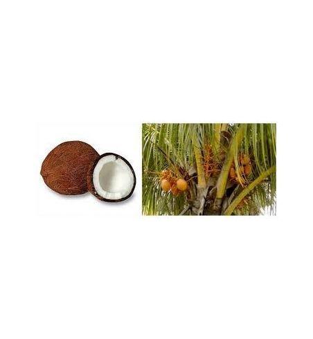 Huile de coco vierge  pressée à froid  100% pure et bio