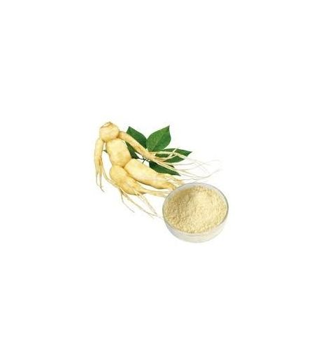 Extract of Ginseng Panax
