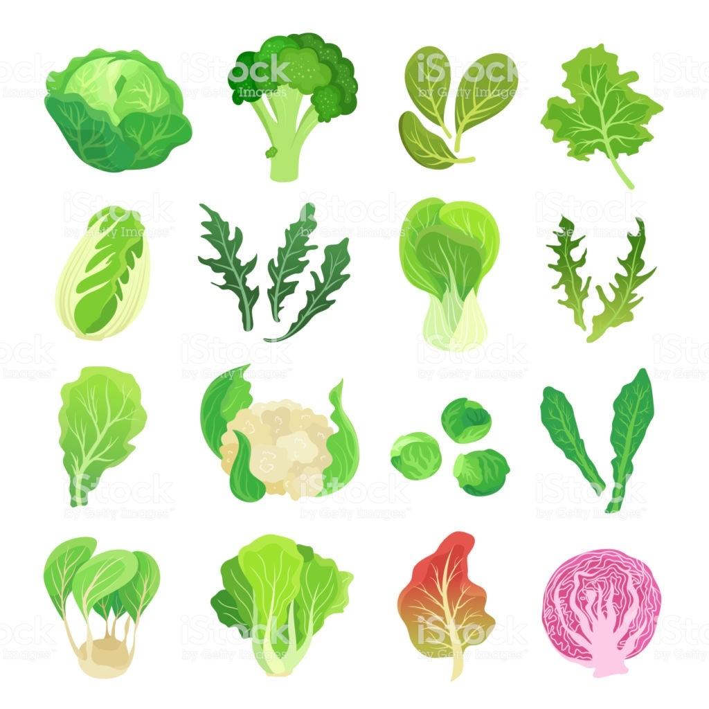 légumes feuillus